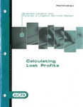 Calculating lost profits by Richard A. Pollack and American Institute of Certified Public Accountants. Business Valuation and Forensic and Litigation Services Section