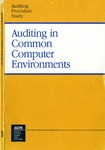 Auditing in common computer environments; Auditing procedure study;