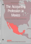 Accounting Profession in Mexico, Second Edition Revised; Professional Accounting in Foreign Country Series