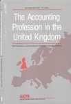 Accounting Profession in the United Kingdom, Second Edition Revised; Professional Accounting in Foreign Country Series