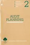 Audit planning; Technical information for practitioners series, 2