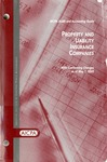 Property and liability insurance companies with conforming changes as of May 1, 2005; Audit and accounting guide: