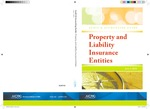 Property and liability insurance entities with conforming changes as of June 1, 2010; Audit and accounting guide