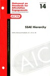 SSAE hierarchy; Statement on standards for attestation engagements 14
