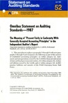 Omnibus statement on auditing standards -- 1987