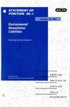 Environmental remediation liabilities, including auditing guidance
