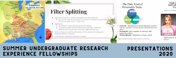 Summer Undergraduate Research Experience Fellowships: Student Presentations 2020