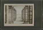 Mineral collection shelves, image 006 by Edward C. Boynton