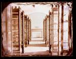 Mineral collection, shelves by Edward C. Boynton