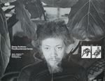 Benny Andrews: the bicentennial series, Herbert Johnson Museum of Art, Cornell University