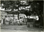 Oxonians on benches, image 1 by J. R. Cofield