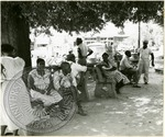Oxonians on benches, image 2 by J. R. Cofield
