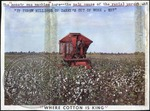 Cotton picker by J. R. Cofield