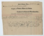 Receipt from Henry Marx and Sons, 29 November 1901 by Henry Marx and Sons