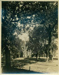 View of a portion of The Circle and The Lyceum taken from in front of Gordon Hall by Author Unknown