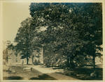 Odom and Deupree Halls by Author Unknown