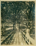 [Walking path bridge from train depot to campus] by Author Unknown
