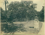 Entrance gate to the University of Mississippi with the Delta Psi Fraternity House in the distance by Author Unknown
