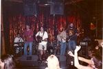 Foil fringe curtain by Kudzu Kings (Musical Group)