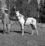 Andrew Price standing with Faulkner's horse at Rowan Oak: Image 9 by Edwin E. Meek