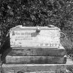 Ammo box containing eight 76mm blanks: Image 1 by Edwin E. Meek