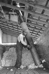 Abbeville cotton gin, image 009 by Martin J. Dain (1924-2000)
