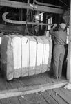 Cotton gin, image 004 by Martin J. Dain (1924-2000)