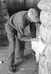 Cotton gin, image 025 by Martin J. Dain (1924-2000)