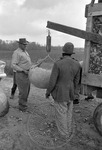 Cotton picking for Brown's Gin and Wholesale, image 017 by Martin J. Dain (1924-2000)