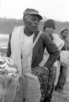 Cotton picking for Brown's Gin and Wholesale, image 034 by Martin J. Dain (1924-2000)