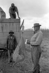 Cotton picking for Brown's Gin and Wholesale, image 021 by Martin J. Dain (1924-2000)