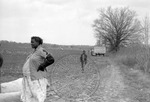 Cotton picking for Brown's Gin and Wholesale, image 062 by Martin J. Dain (1924-2000)