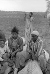 Cotton picking for Brown's Gin and Wholesale, image 025 by Martin J. Dain (1924-2000)