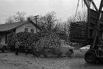 Lumber, image 006 by Martin J. Dain (1924-2000)