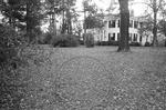Rowan Oak, image 045 by Martin J. Dain