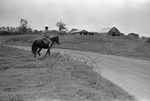 Rural Mississippi, image 008 by Martin J. Dain