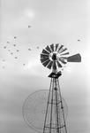 Rural Mississippi, image 012 by Martin J. Dain
