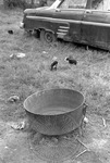 Rural Mississippi, image 028 by Martin J. Dain