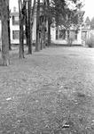 Rowan Oak, image 073 by Martin J. Dain