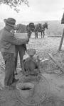Sorghum syrup making, image 140 by Martin J. Dain (1924-2000)