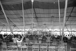 Tent Revival, image 004 by Martin J. Dain