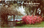 Holly Bluff Gardens On-The-River Jordan by Natural Color Postcards, Kobert Color Pictures (Doniphan, Mo.)
