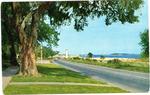 Along The Coast by Deep South Specialties, Inc. (Jackson, Miss.)