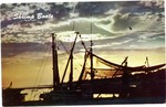 Shrimp Boats by Natural Color Postcards, Kobert Color Pictures (Doniphan, Mo.)