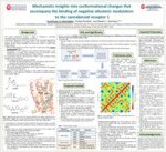 Mechanistic insights into conformational changes that accompany the binding of negative allosteric modulators to the cannabinoid receptor 1 by AyoOluwa Aderibigbe, Pankaj Pandey, and Robert J. Doerksen