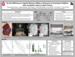 No Sex Differences in Spatial Memory Ability or Response to Aromatase Inhibition after Cerebellar Lesion in Zebra Finches by Chyna-Rae Dearman, Logan Boutwell, Zahra Jiwani, and Emily McFatridge