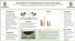 Nesting Behavior of Zebra Finches by Asma Obad, Zahra Jiwani, and Lainy B. Day