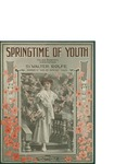 Springtime of Youth / words by Walter Rolfe by Walter Rolfe and Maurice Richmond Music Co. (New York)