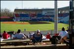 Ole Miss Baseball Game [Swayze Field] by Miranda Cully