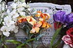 Flowers on Grave by Caroline Croom